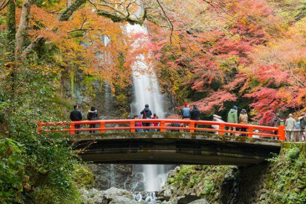 Cây cầu đỏ bắc qua thác nước thơ mộng tại công viên.