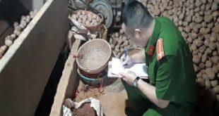 Nông sản Trung Quốc bị cấm cửa không cho xuất khẩu vào Đà Lạt
