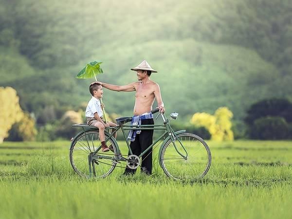 Nằm mơ thấy xe đạp điềm báo tốt hay xấu? Đánh con gì?