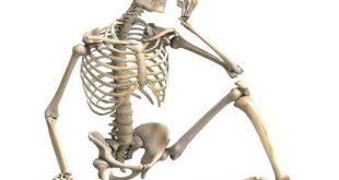 Nằm mơ thấy xương người có điềm báo gì, đánh con gì dễ trúng